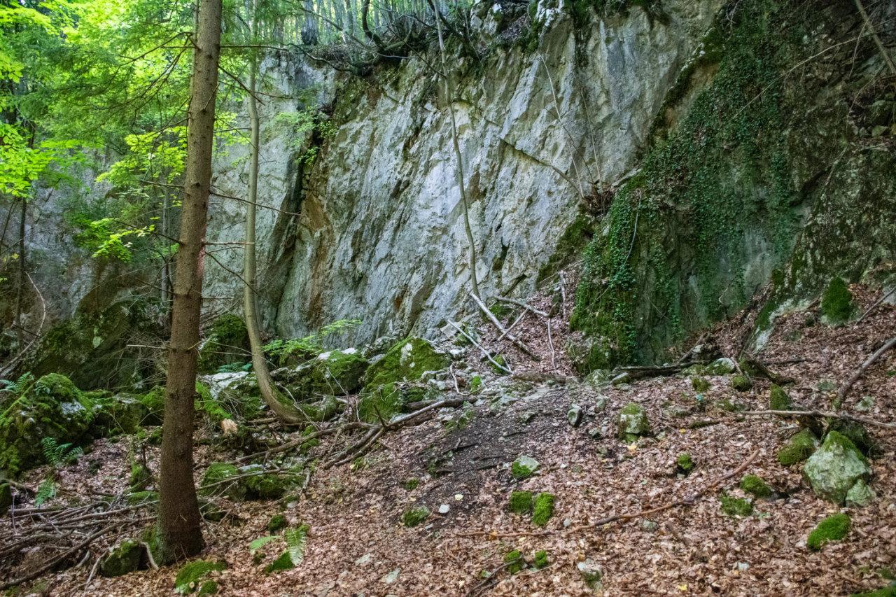 Medená jaskyňa, Poniky